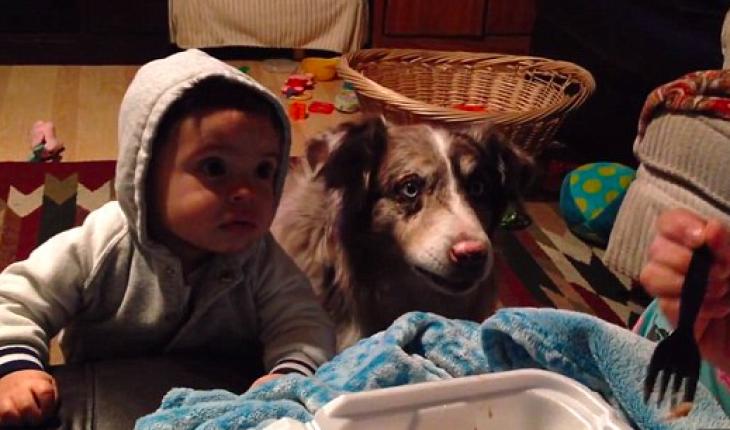 видеоролик как мама кормит
