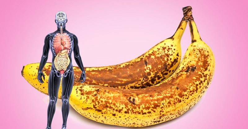 Протеиновый порошок польза или вред