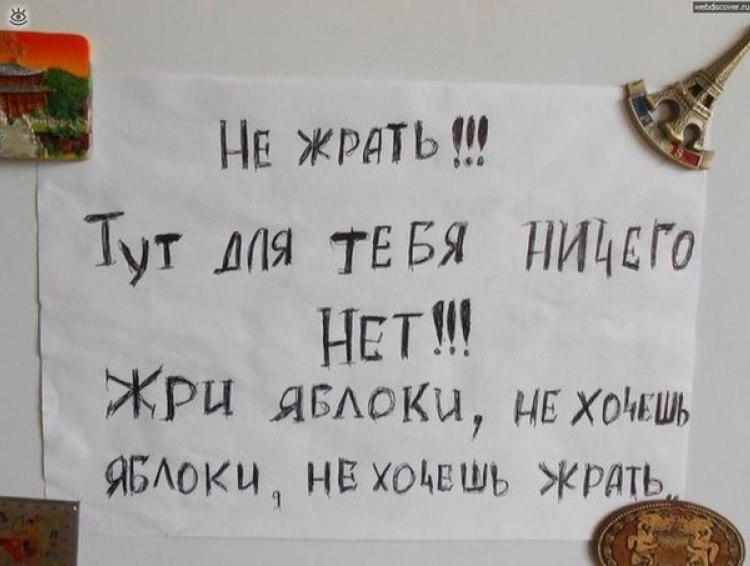 Прикол На Холодильник Для Похудения.