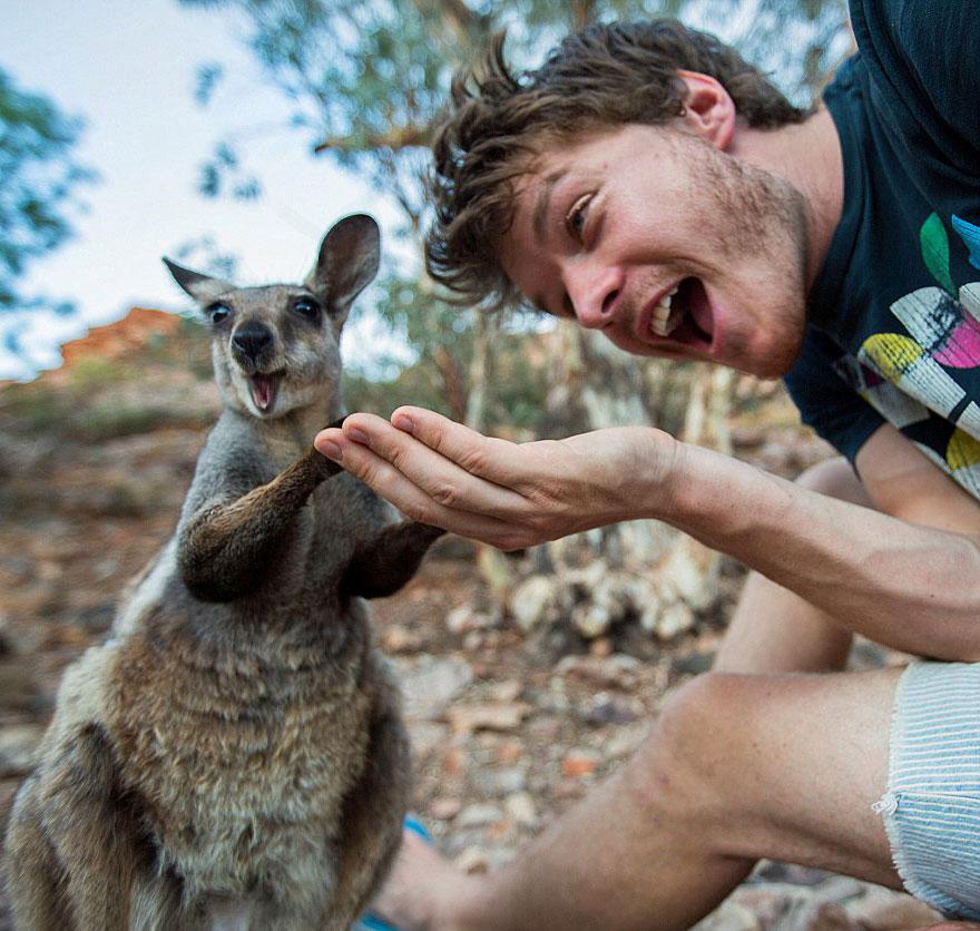 Фото с животными как сделать