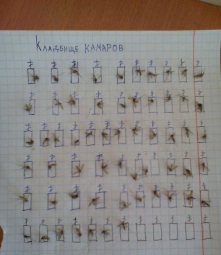 surovyj-kladbishhenskij-jumor-ili-25-primerov-togo_18_1