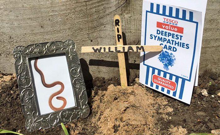 tesco-cucumber-worm-funeral-wes-metcalfe-5