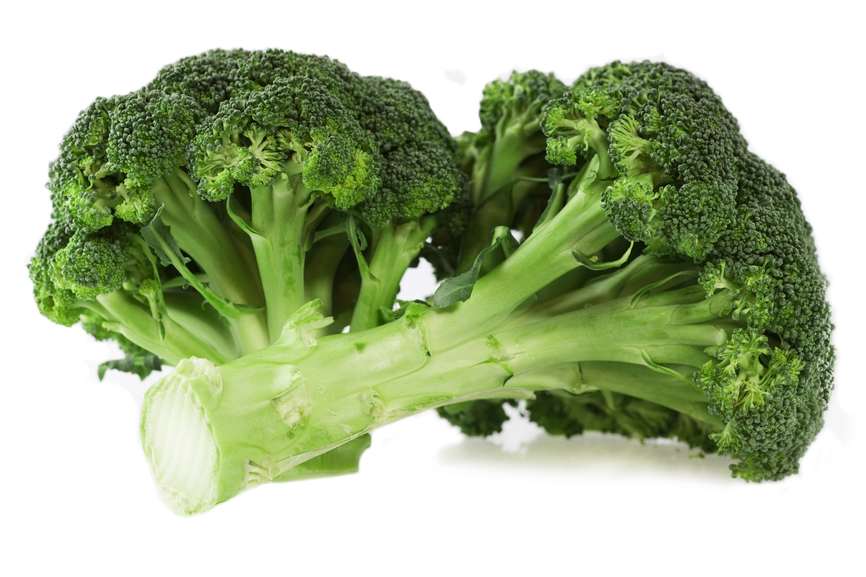 Fresh broccoli on white background with light shadow