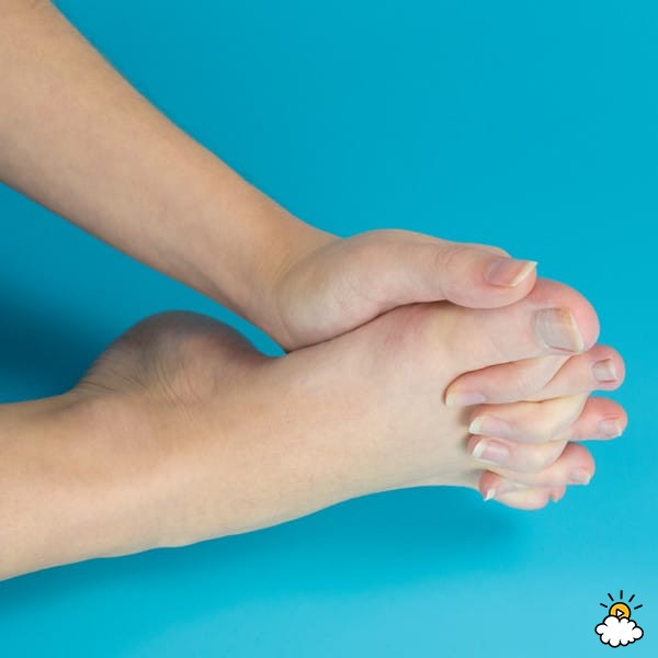 Изображение - Сустав ноги 10 01-2-1