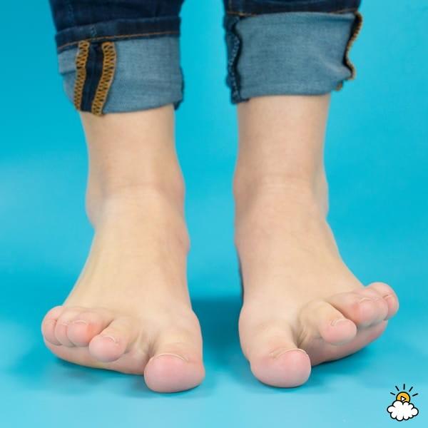 Изображение - Сустав ноги 10 2-52