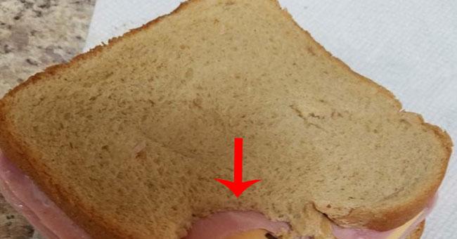 сэндвич приколы