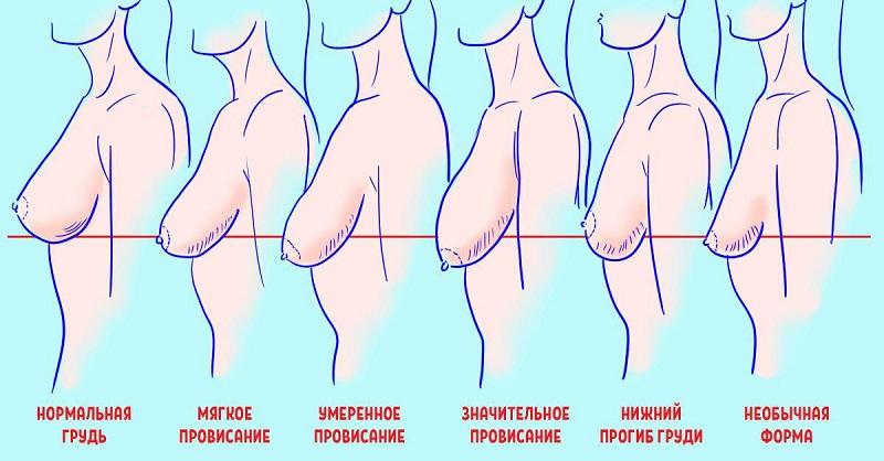 Дорогах фото картинки женской груди