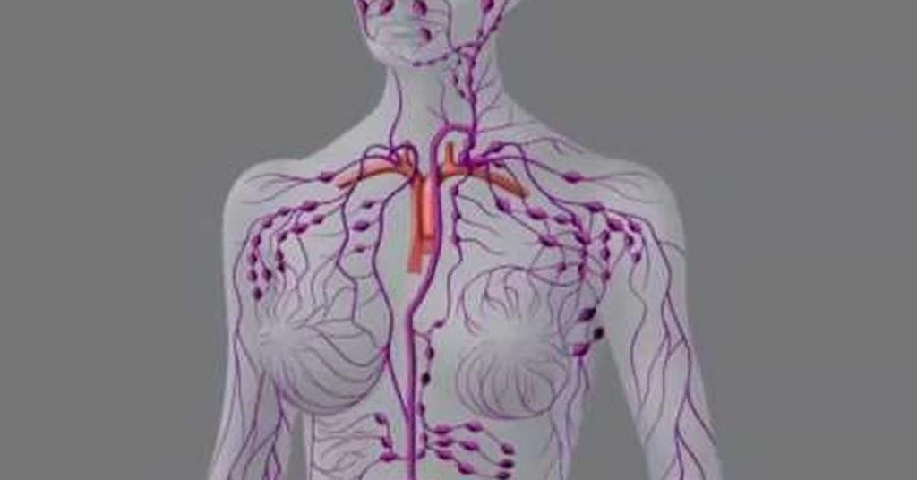 Проверка йода в организме на руке