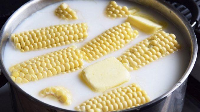 Картинки по запросу ты сваришь лучшую в мире кукурузу