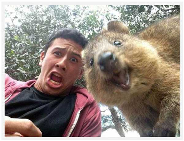 funny-selfies-fail-funny-pics-of-crazy-selfies-7