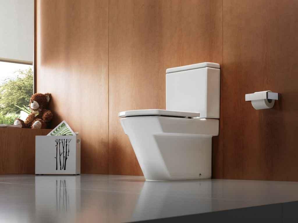 toilet-224-1449959