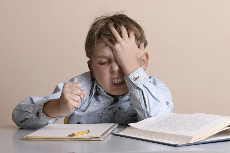 Смотреть Делать с ребенком уроки не надо И вообще уроки делать не надо видео