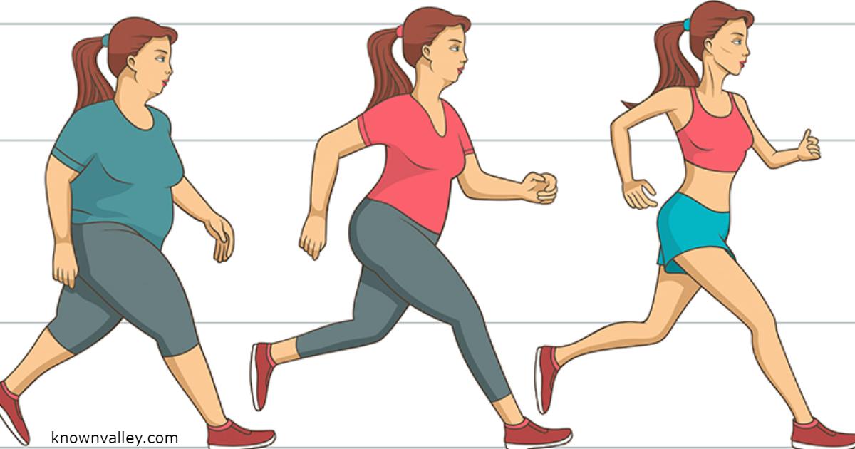 Схема Похудения Физически. Упражнения для похудения в домашних условиях