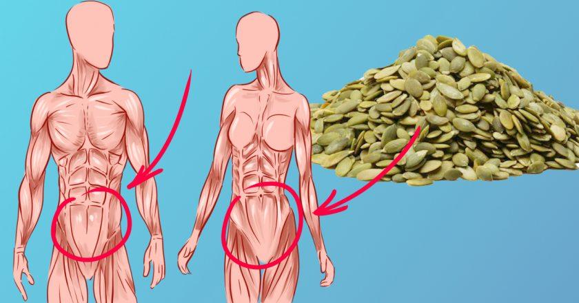 10 причин, по которым тебе следует есть семена тыквы каждый день