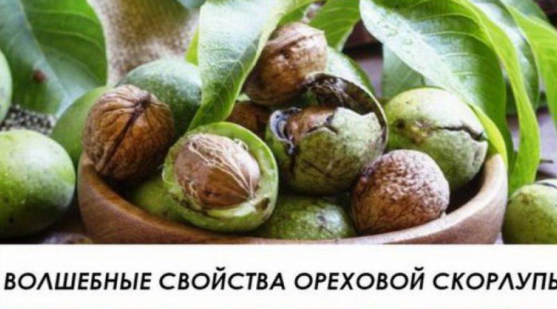 Волшебные свойства: Вот почему нельзя выбрасывать кожуру грецких орехов