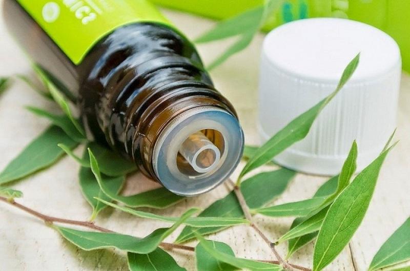 Топ 4 удивительных преимуществ масла чайного дерева для здоровья