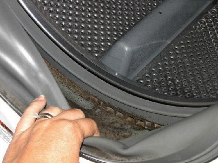 Это простое домашное средство сможет помочь вам избавится от плесени в стиральной машинке