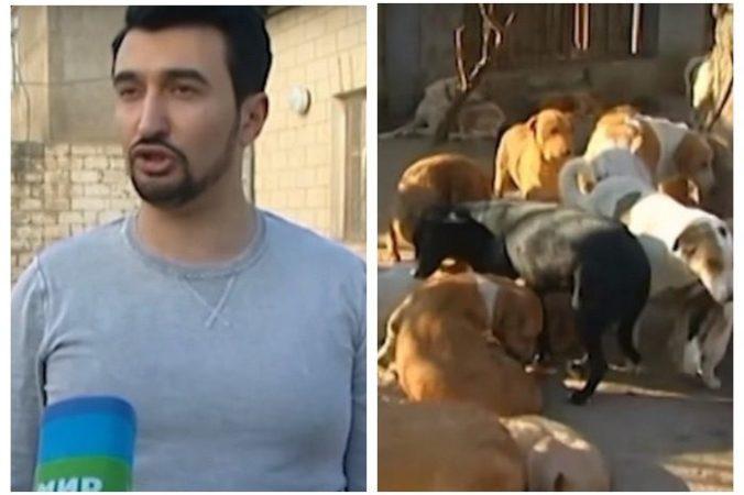 Этот небезразличный парень подбирает на улицах искалеченных собак, выхаживает их и учит снова доверять людям. Он спас 350 собак!