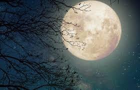 Лунный календарь на 12 апреля 2019 года