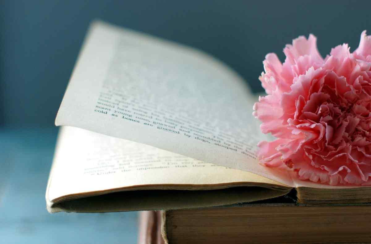 Не удержав равновесия, Павел выпустил книгу с руки. Она упала на любимый вазон Любы и сломала цветок | Истории | Отдых