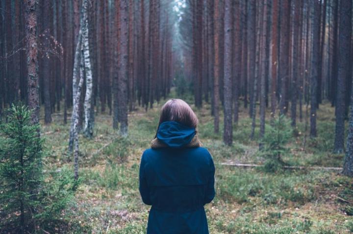 Муж раз в неделю уезжал в лес. Жена решила проследить. Потом долго не могла в себя прийти | Истории | Отдых