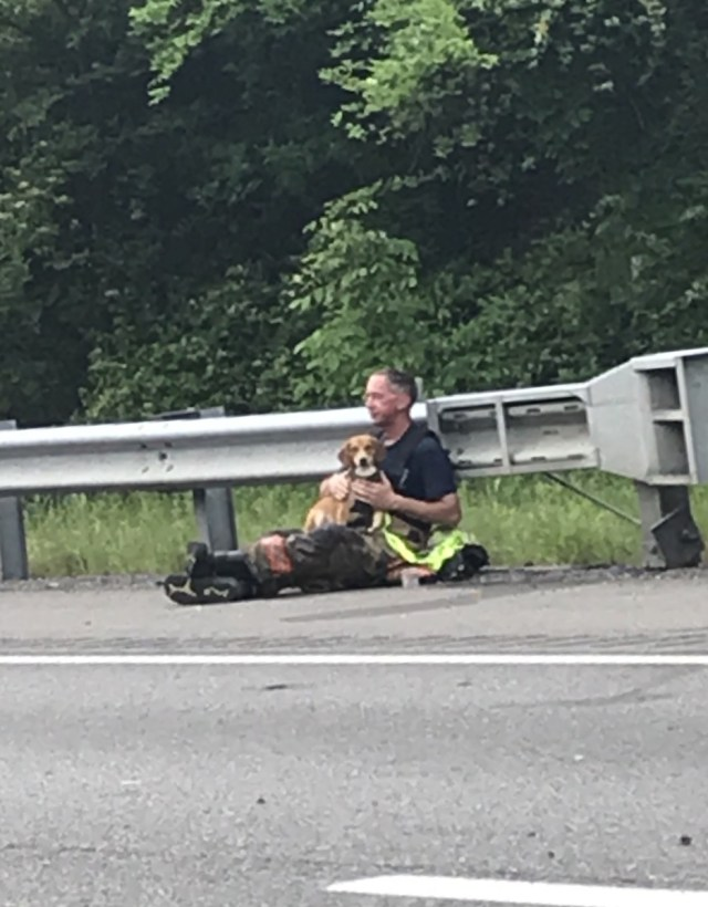 Проникновенное фото пожарного с собакой на руках на месте автокатастрофы стало вирусным
